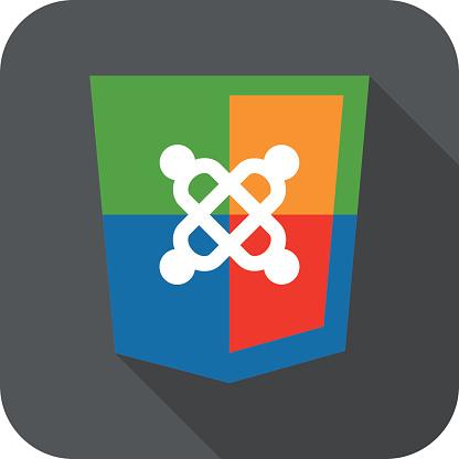 vector illustration of web development shield sign symbol content system