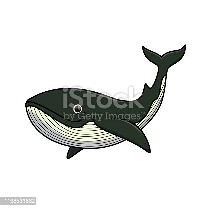 Vector illustration of whale isolated on white background.