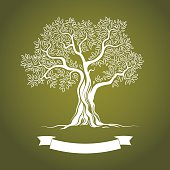 Vector illustration of white olive tree on green