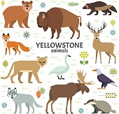Vector illustration of Yellowstone National Park animals