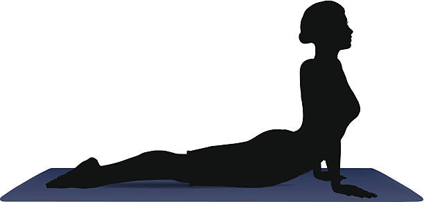 vector illustration of Yoga positions in Cobra Pose EPS 10 vector illustration of Yoga positions in Cobra Pose cobra pose stock illustrations