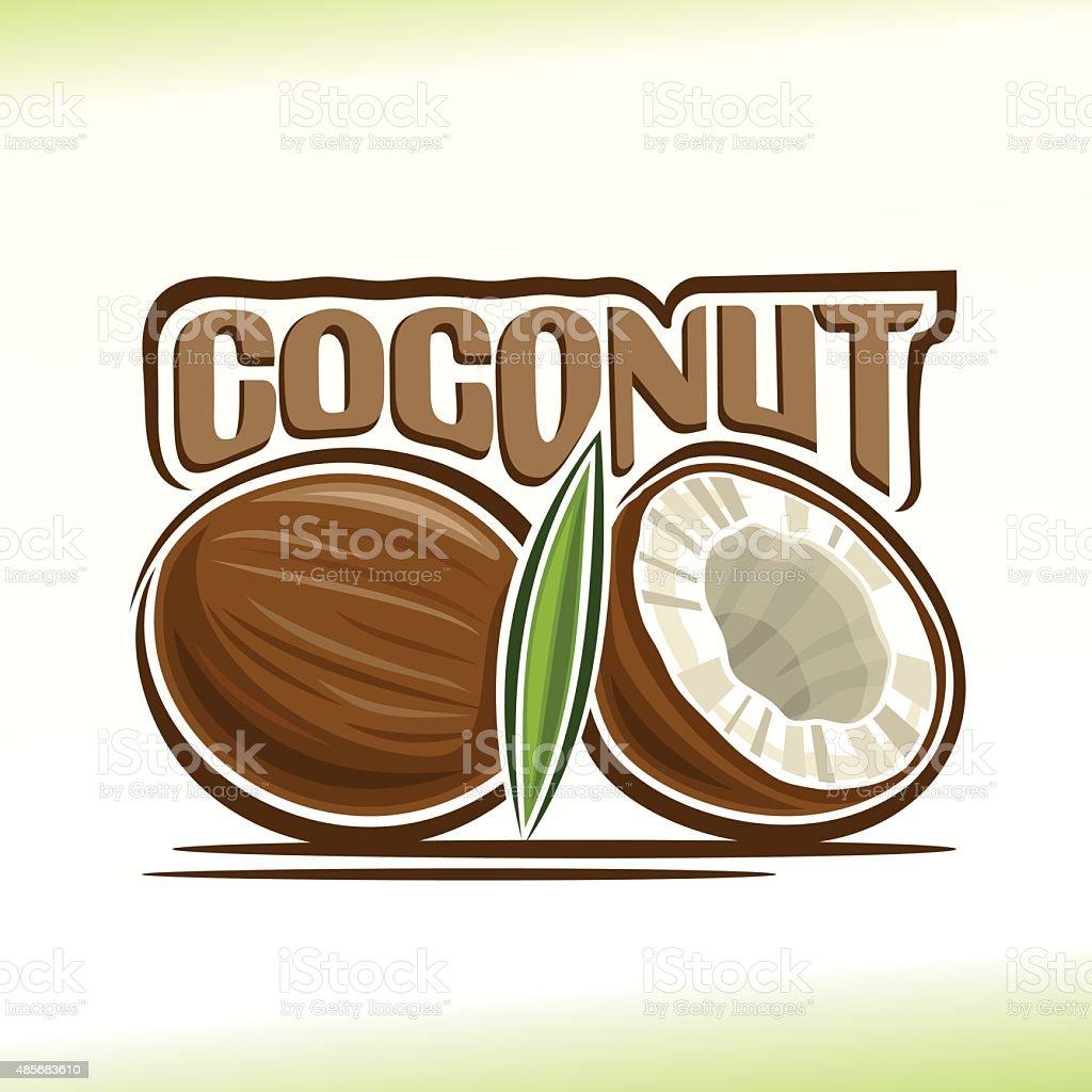Vector illustration on the theme of coconut vector art illustration