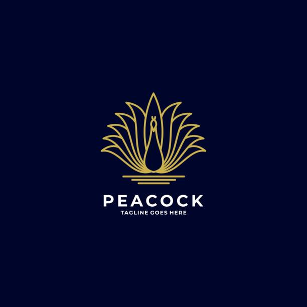 Vector Illustration Peacock Gradient Line Art Style. Vector Illustration Peacock Gradient Line Art Style. animal markings stock illustrations