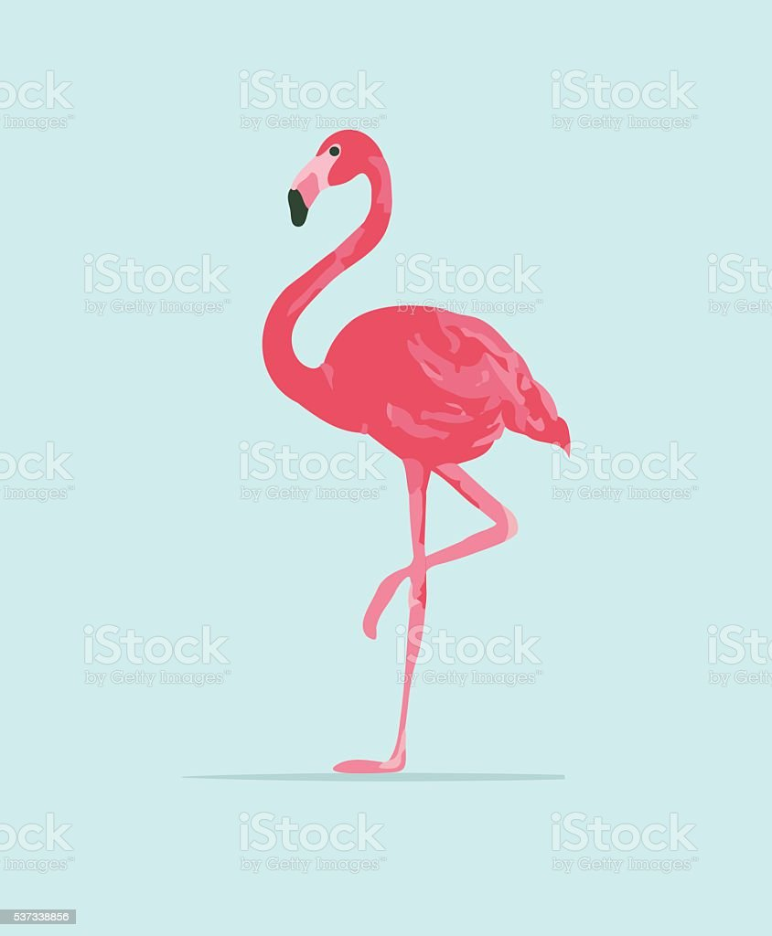 Vector illustration pink flamingo vector art illustration