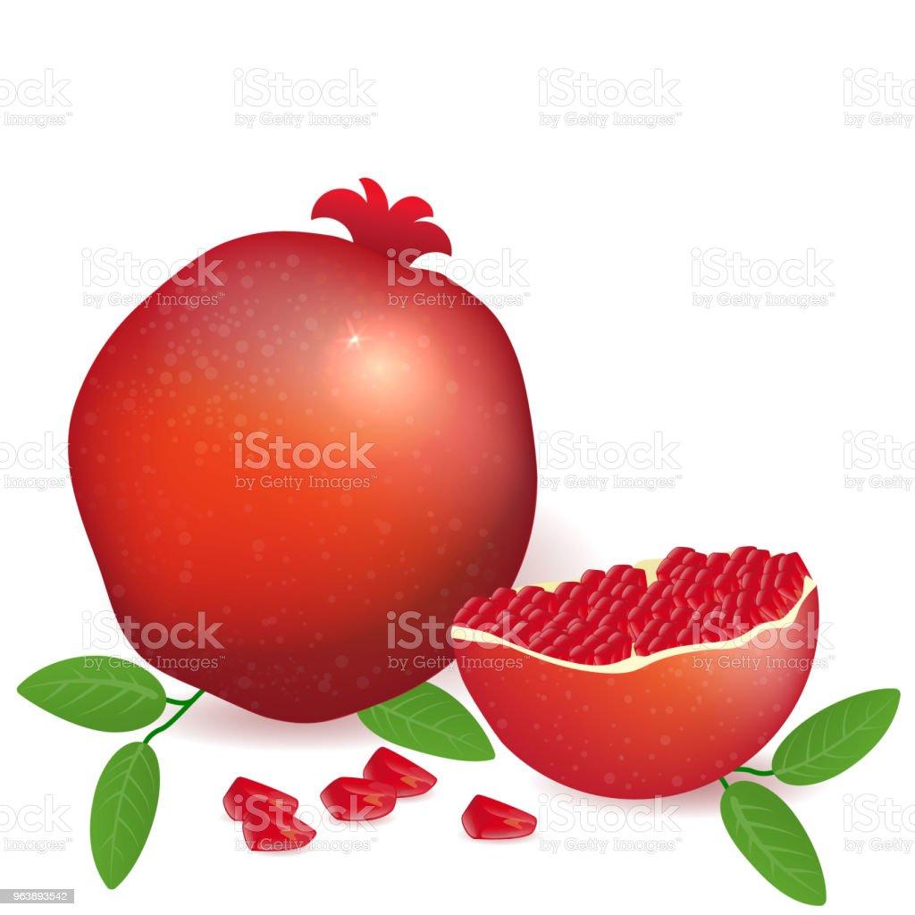 Vector illustration pomegranate full and sliced  fruit. - Royalty-free Archival stock vector