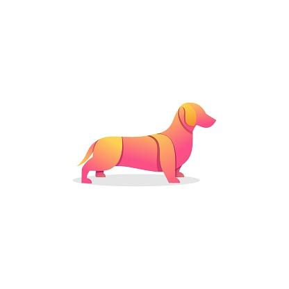 Vector Illustration Poodle Gradient Colorful.