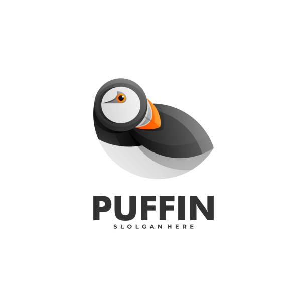 vektor-illustration puffin gradient bunten stil. - iceland stock-grafiken, -clipart, -cartoons und -symbole