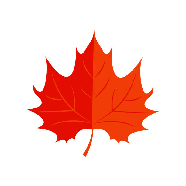 Royalty Free Red Maple Leaf Clip Art, Vector Images ...