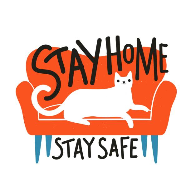 illustrazioni stock, clip art, cartoni animati e icone di tendenza di vector illustration red sofa and relaxed white cat. stay home stay safe lettering phrase. - divano procrastinazione