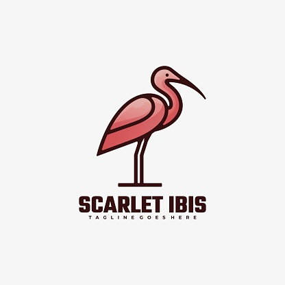 Vector Illustration Scarlet Ibis Gradient Colorful Style.
