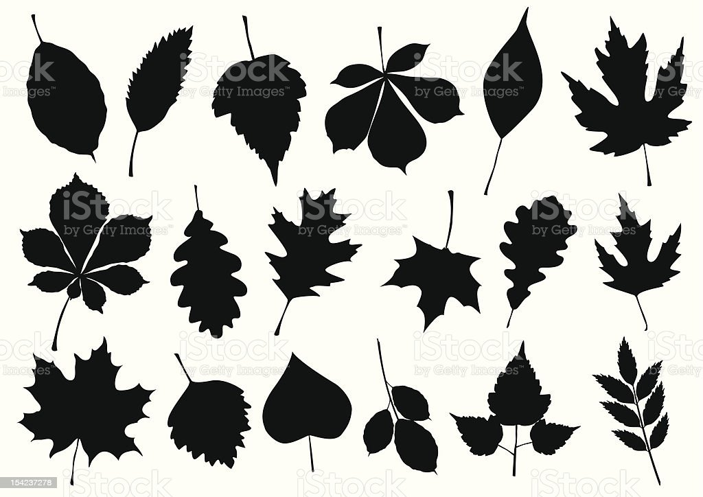 Vector illustration set of autumn leaf silhouettes. royalty-free stock vector art