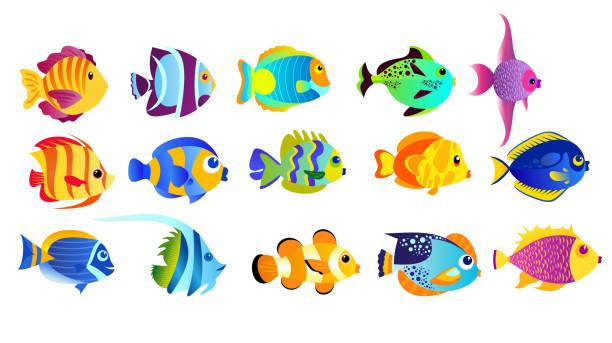 ilustrações de stock, clip art, desenhos animados e ícones de vector illustration set of bright colors tropical fishes isolated on white background in flat cartoon style. - peixe