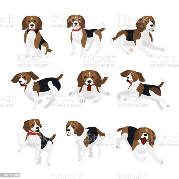 Vector illustration set of cute and funny beagle dog lively actions vector id946192686?b=1&k=6&m=946192686&s=612x612&h=oqhjmrjjtvhx76cdnmskbesr9vwctww5jf4rlxx9sd0=