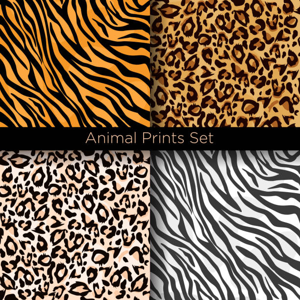 vector illustration set of four different seamless animal patterns. safari textile concept. tiger, zebra, leopard and jaguar skin seamless patterns in flat style for your design. - leopard texture stock illustrations