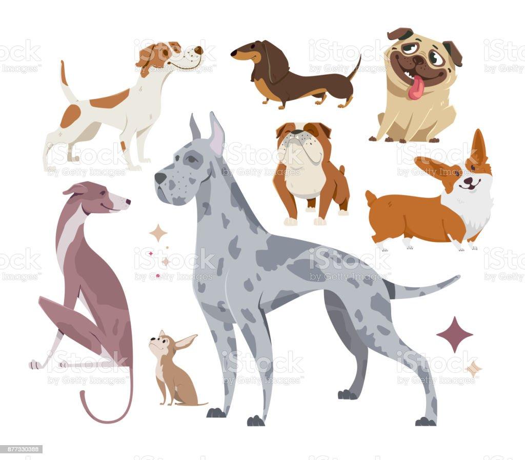 Ilustración de Vector, conjunto de perros de pura raza divertidos, sobre un fondo blanco. - ilustración de arte vectorial