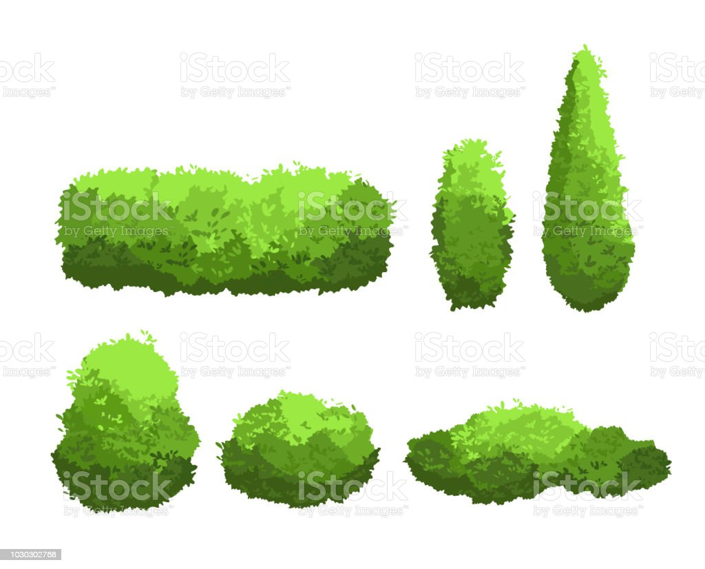 Vector illustration set of garden green bushes and decorative trees different shapes. Shrub and bush collection in cartoon style isolated on white background. royalty-free vector illustration set of garden green bushes and decorative trees different shapes shrub and bush collection in cartoon style isolated on white background stock illustration - download image now
