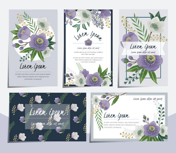 Vector illustration set of hand drawn cards for wedding, anniversary, birthday and party. Design for banner, poster, card, invitation and scrapbook violet flower stock illustrations