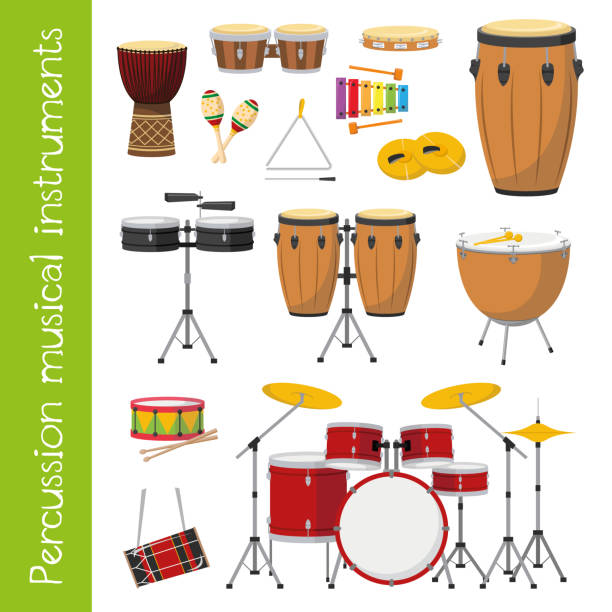 vector illustration set of percussion musical instruments in cartoon style isolated on white background - instrument perkusyjny stock illustrations