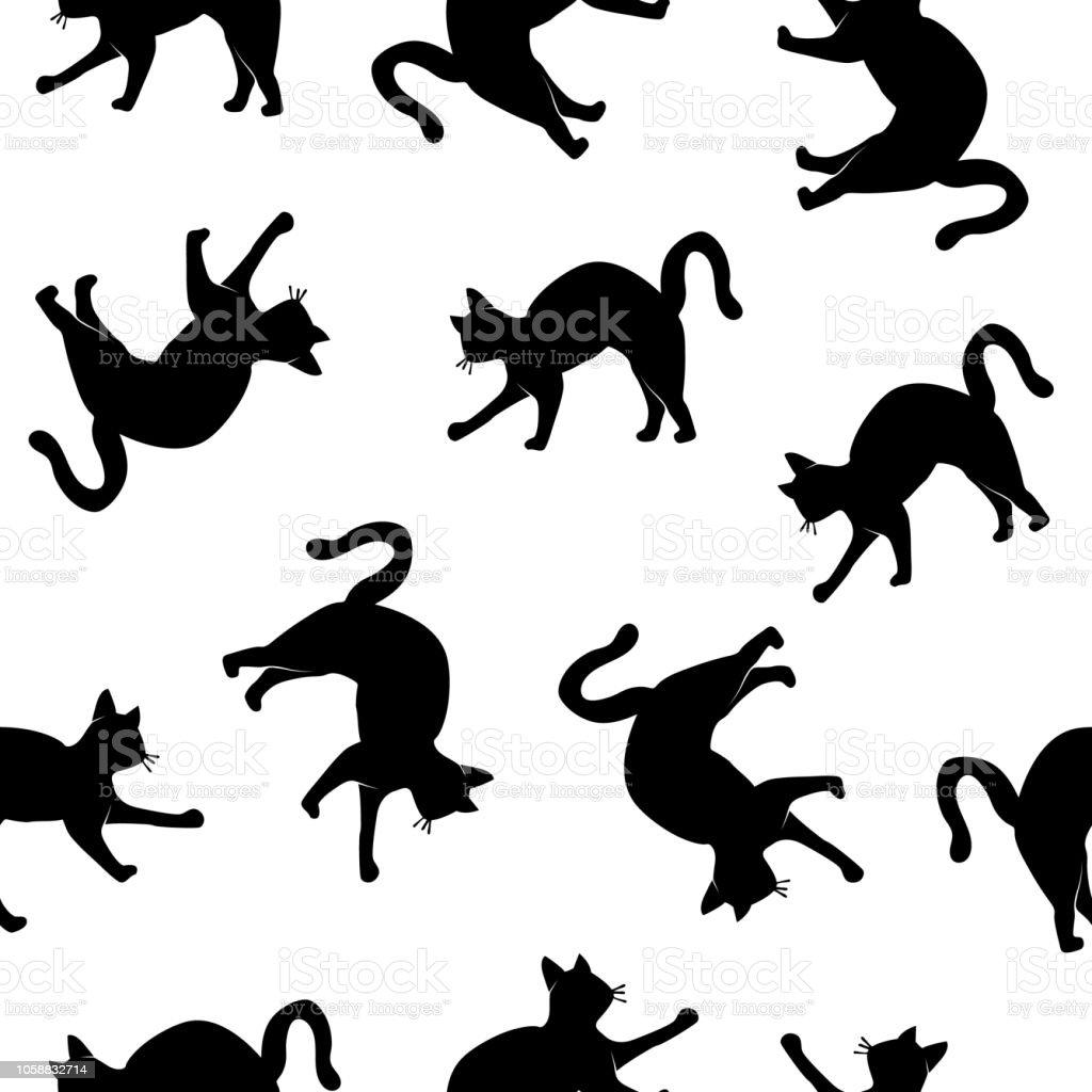 katzen schatten