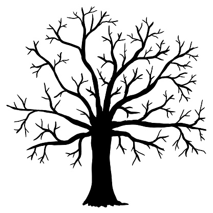 Vector illustration. Silhouette of bare tree on white background.