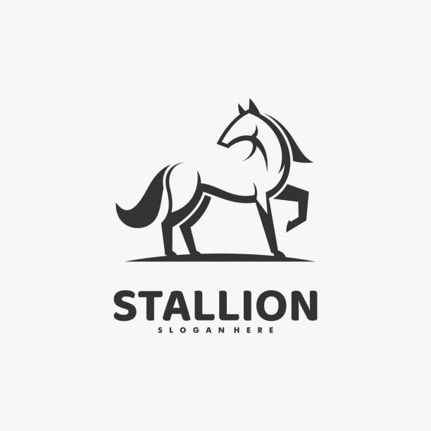 Vector Illustration Stallion Line Art Style. Vector Illustration Stallion Line Art Style. mammal stock illustrations