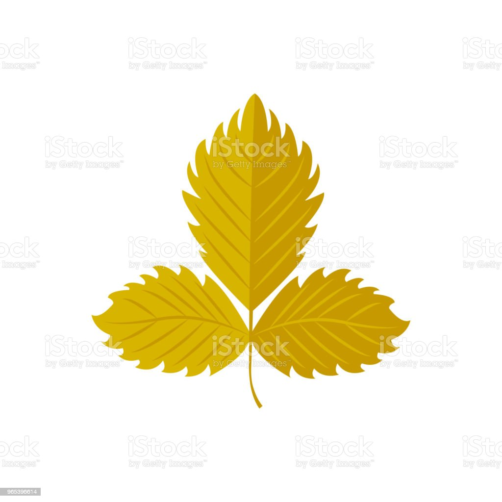 Vector Illustration. Strawberry leaf. Autumn leaf. Icon royalty-free vector illustration strawberry leaf autumn leaf icon stock vector art & more images of abstract