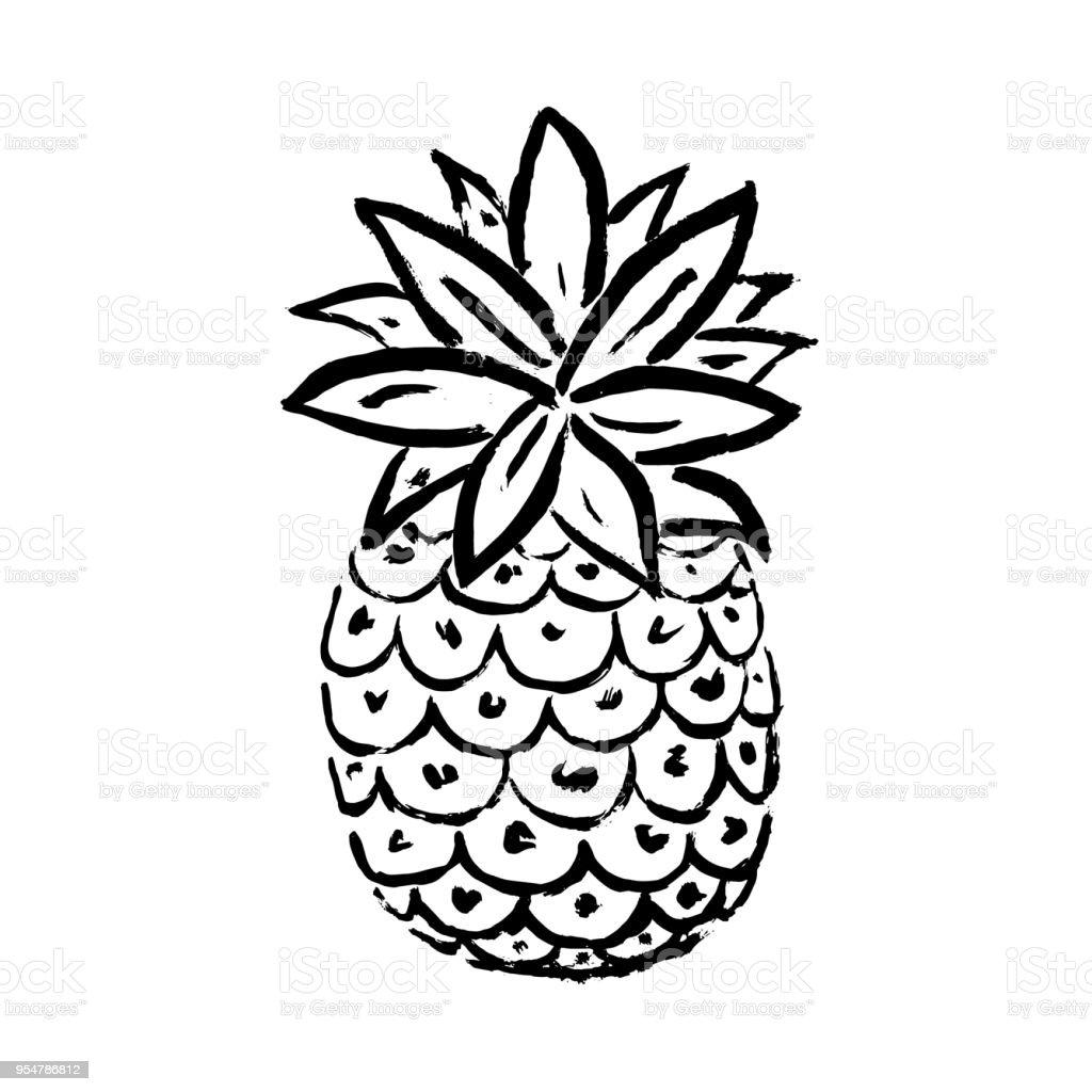 Vektör çizim Yaz Ananas Tropikal Dekoratif Meyve Simgesi El çizmek