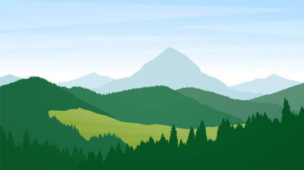 vektor-illustration: sommer wilde berge landschaft mit pinien, hügel und berge. - horizontal stock-grafiken, -clipart, -cartoons und -symbole