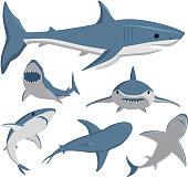 istock Vector illustration toothy swimming angry shark animal sea fish character underwater cute marine wildlife mascot 862508922