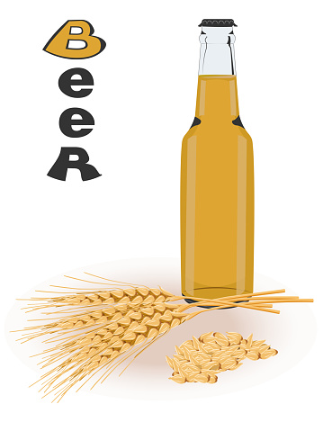 Vector illustration with a beer bottle and malt branches. Color image of the drink and the ingredient from which it is made. Lettering of the word beer