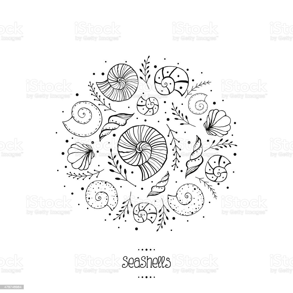 Vector illustration with ammonites and sea shells in sketch style vector art illustration