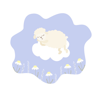 Vector illustration with cartoon sheep lying on cloud, chamomile and lavender on purple background.