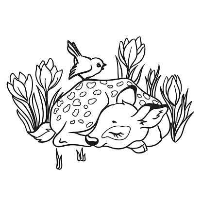 Vector illustration with cute sleeping deer with a blue bird and with flowers.