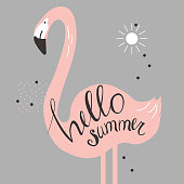 Vector illustration with flamingo
