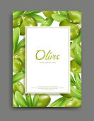 Vector illustration with green olives and leaf isolation on the white background, frame.