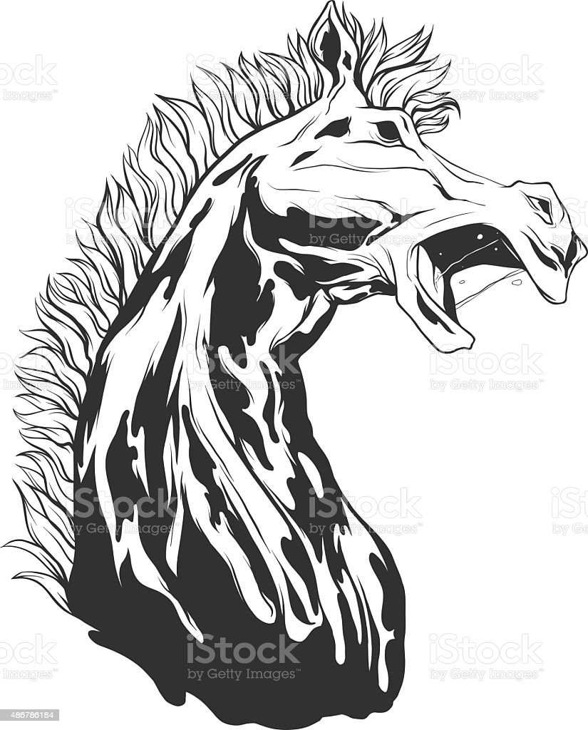 Vector Illustration With Horse Head Stock Illustration Download Image Now Istock