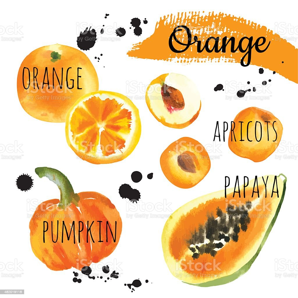 Vector Illustration with only orange fruits & vegetables. vector art illustration