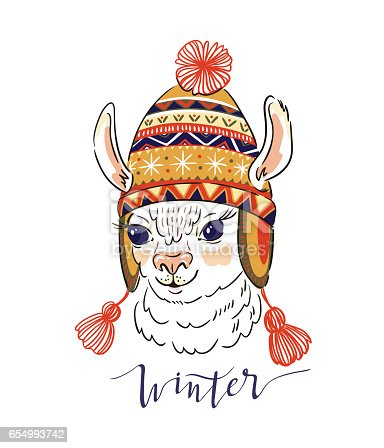 Vector illustration with portrait of alpaca in knitted ornamental cap.