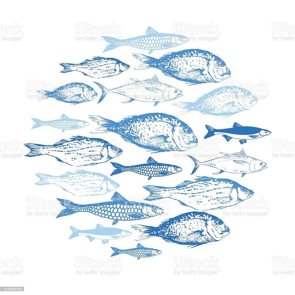 Vector illustration with sketches of fish. vector art illustration