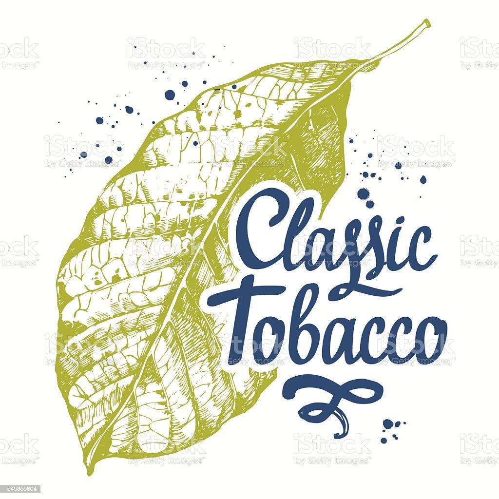 Tobacco Leaf Drawing