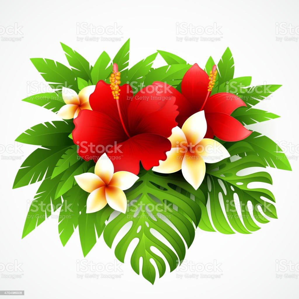ベクトルイラストの南国の植物と花 15年のベクターアート素材や画像を多数ご用意 Istock