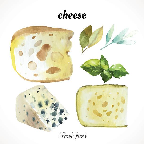 векторная иллюстрация с акварельными пищи. - cheese stock illustrations