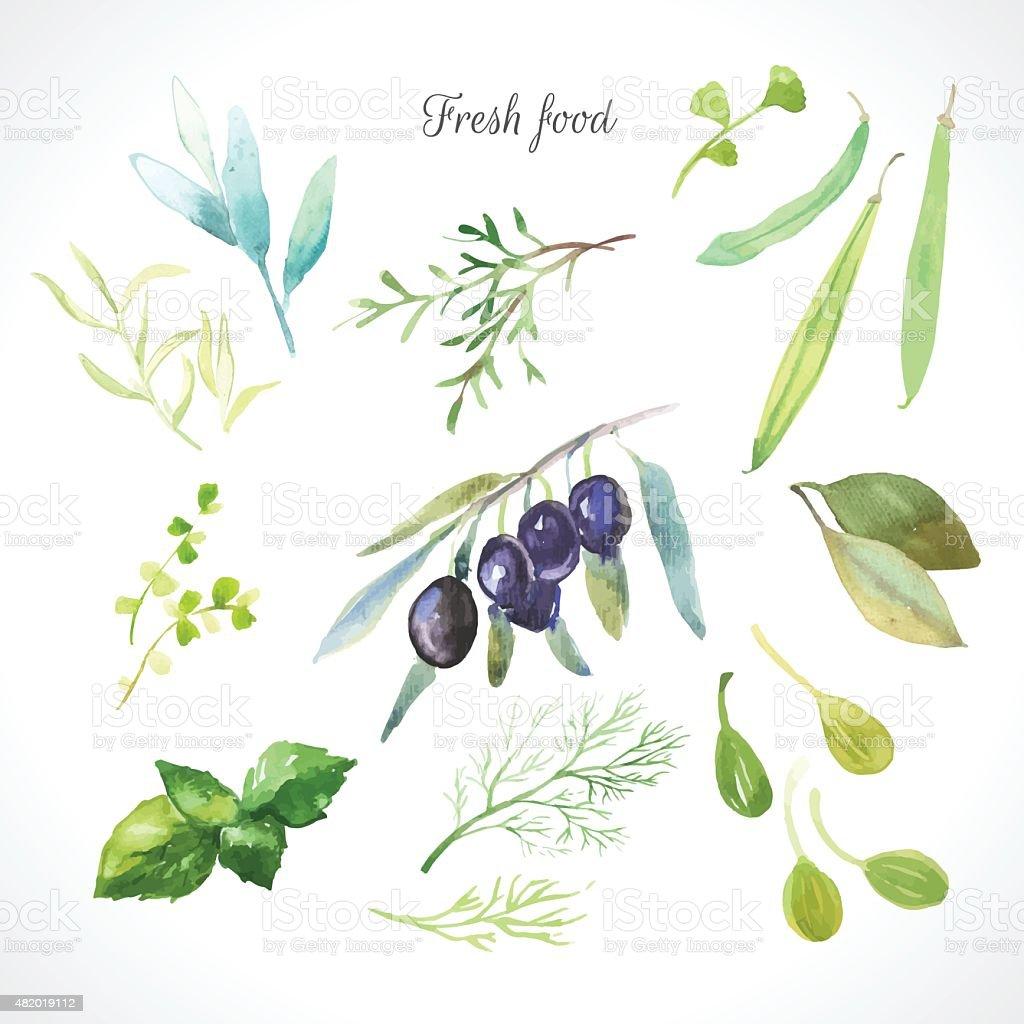 Ilustração vetorial com aquarela comida. - ilustração de arte em vetor