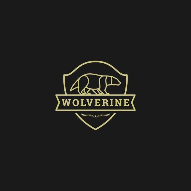 Vector Illustration Wolverine Walk Vintage Badge. Vector Illustration Wolverine Walk Vintage Badge. skunk stock illustrations