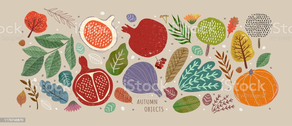 Vector illustrations of autumn objects: fruits and vegetables, harvest, trees, leaves, plants, pumpkin, pomegranates, figs and nuts. Cute freehand drawings to create a poster or card. - Grafika wektorowa royalty-free (Abstrakcja)