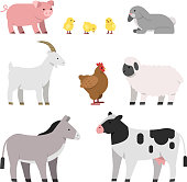 Vector illustrations of farm animals. Cow and chicken, pig and hen, rooster and sheep