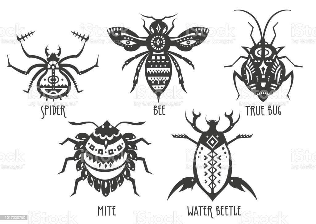 Ilustración de Ilustraciones Vectoriales De Araña Abeja Cierto ...