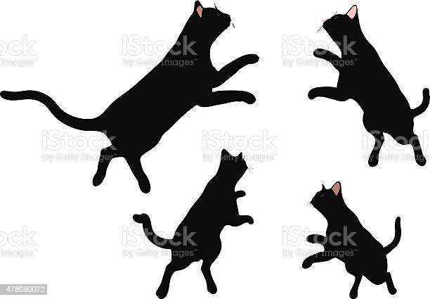 Vector image cat silhouette in jumping pose vector id478090072?b=1&k=6&m=478090072&s=612x612&h=rkzhh01panls2ymgebtfd1rj2kvvaoe5gdenc2smz64=