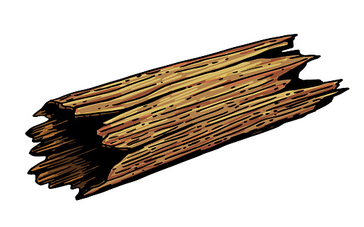 Vector image of a fallen old tree trunk.