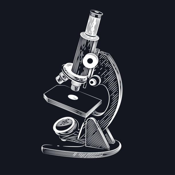 bildbanksillustrationer, clip art samt tecknat material och ikoner med vektorbild av ett mikroskop - microscope